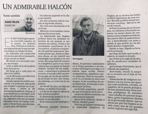 2018_04_20_Un admirable halcón